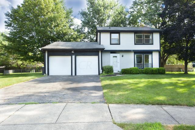 1002 Tipton Court, Westerville, OH 43081 (MLS #219026338) :: CARLETON REALTY