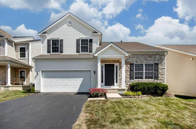 220 Olentangy Meadows Drive, Lewis Center, OH 43035 (MLS #219026361) :: Keith Sharick | HER Realtors