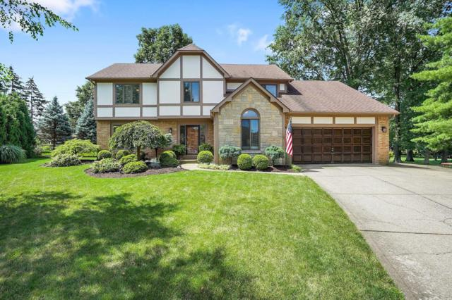 1191 Clapham Court, Westerville, OH 43081 (MLS #219026419) :: RE/MAX ONE