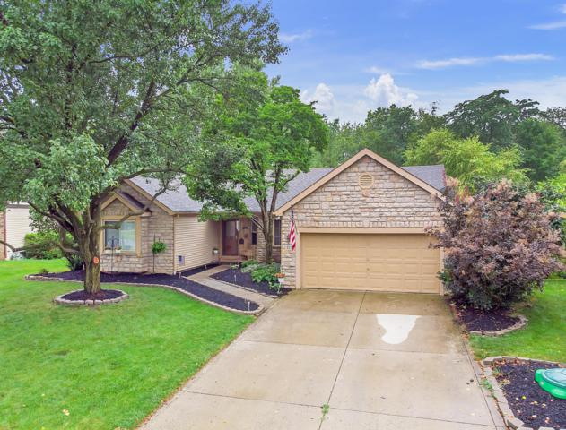 327 Meadow View Drive, Powell, OH 43065 (MLS #219026456) :: Signature Real Estate