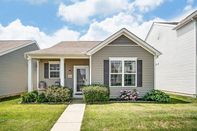 6087 Deansboro Drive, Westerville, OH 43081 (MLS #219026463) :: RE/MAX ONE