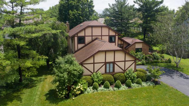 120 Spring Creek Drive, Westerville, OH 43081 (MLS #219026489) :: RE/MAX ONE