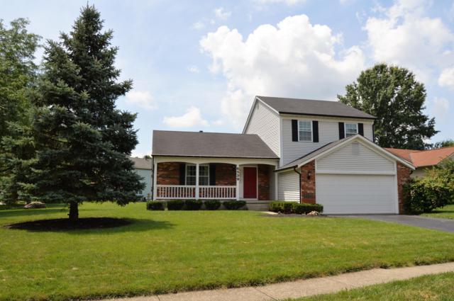 6539 Old Church Way, Reynoldsburg, OH 43068 (MLS #219026547) :: Signature Real Estate