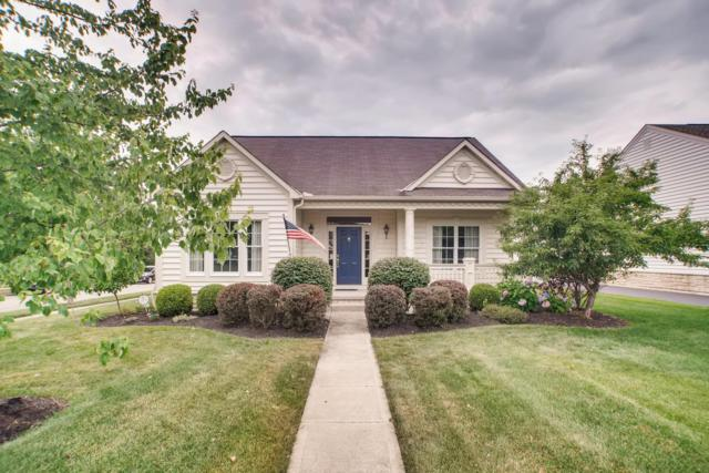 7057 Dean Farm Road, New Albany, OH 43054 (MLS #219026560) :: The Raines Group
