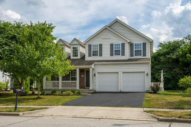 1110 Carnoustie Circle, Grove City, OH 43123 (MLS #219026567) :: The Raines Group