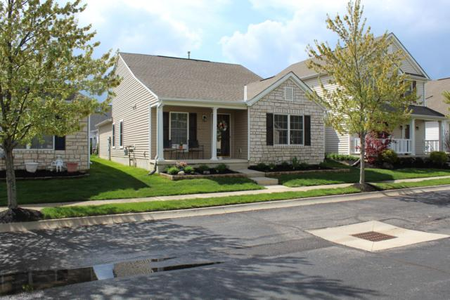 8679 Pennycress Lane, Lewis Center, OH 43035 (MLS #219026575) :: Keith Sharick | HER Realtors
