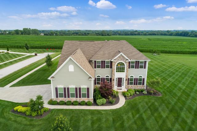 101 Covington Lane, Pataskala, OH 43062 (MLS #219026705) :: Huston Home Team