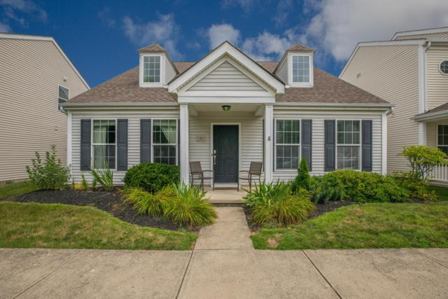 7182 Alma Terrace Drive, New Albany, OH 43054 (MLS #219026776) :: RE/MAX ONE