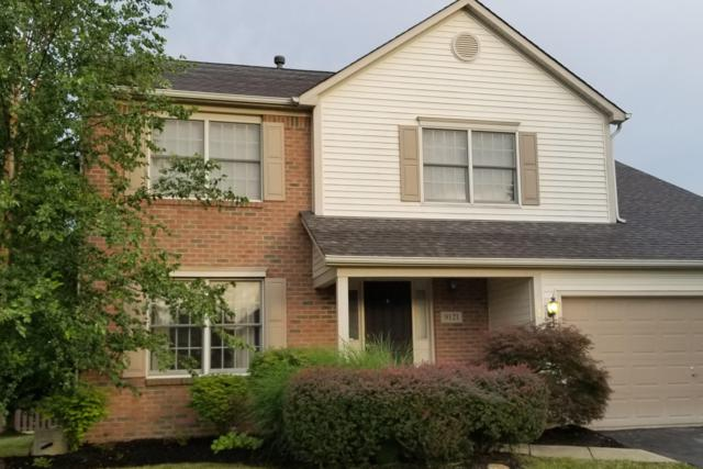 9121 Palomino Drive, Pickerington, OH 43147 (MLS #219026796) :: Brenner Property Group   Keller Williams Capital Partners