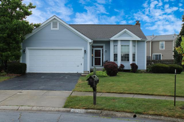 2800 Toms Trace Court, Hilliard, OH 43026 (MLS #219026805) :: Signature Real Estate