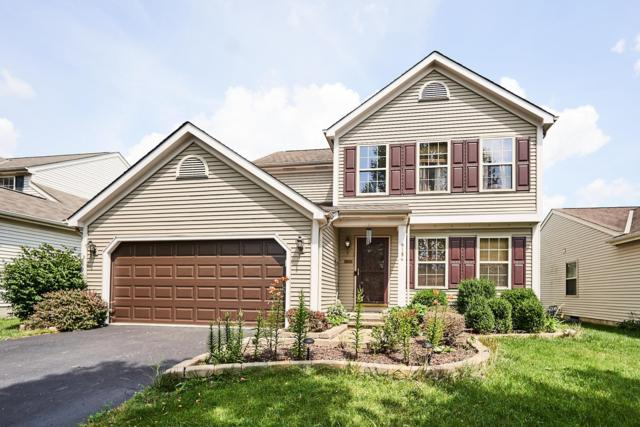 9184 Prestwick Green Drive, Columbus, OH 43240 (MLS #219026892) :: The Raines Group