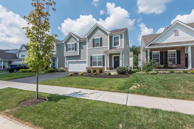 6169 Dajana Drive, Westerville, OH 43081 (MLS #219026921) :: Keith Sharick | HER Realtors