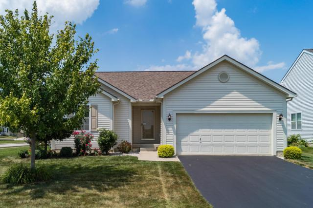 185 Red Oak Pass, Commercial Point, OH 43116 (MLS #219027071) :: RE/MAX ONE