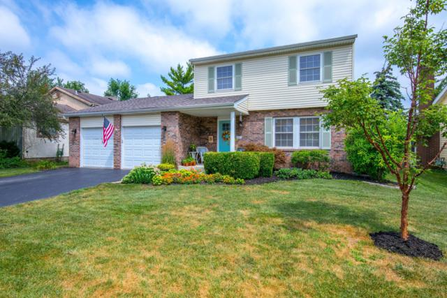 3648 Cannongate Drive, Columbus, OH 43228 (MLS #219027076) :: ERA Real Solutions Realty