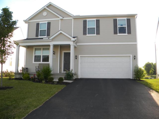 8648 Bobwhite Drive, Blacklick, OH 43004 (MLS #219027107) :: RE/MAX ONE