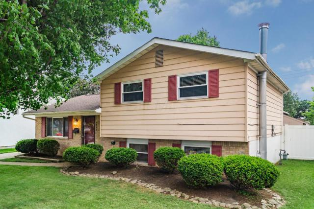 4845 Warminster Drive, Columbus, OH 43232 (MLS #219027249) :: RE/MAX ONE