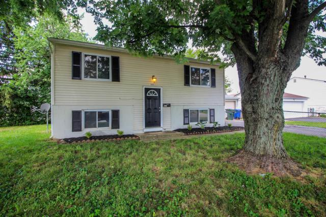 3805 Higbee Drive E, Columbus, OH 43207 (MLS #219027412) :: Signature Real Estate