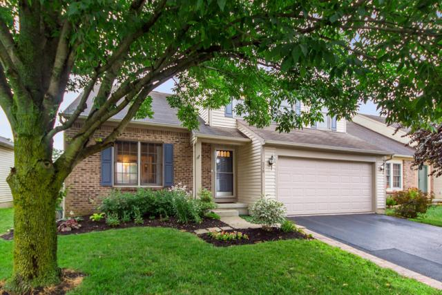 278 Yehlshire Drive, Galloway, OH 43119 (MLS #219027430) :: The Raines Group