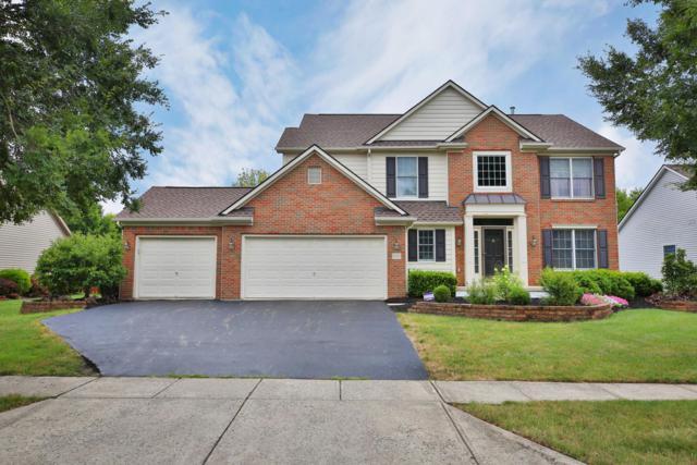 3166 Echo Park Drive, Hilliard, OH 43026 (MLS #219027437) :: Signature Real Estate