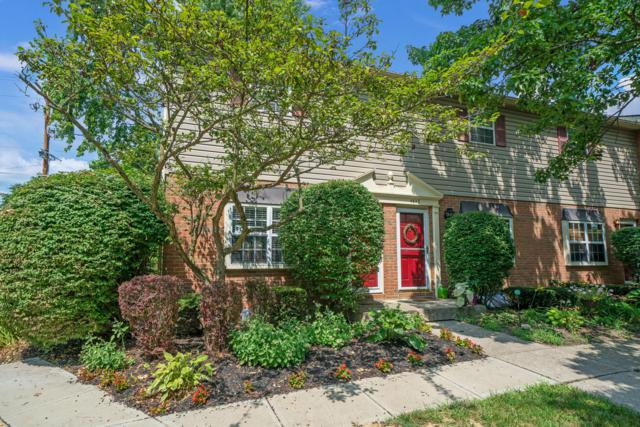 4641 Orwell Drive, Columbus, OH 43220 (MLS #219027649) :: The Raines Group