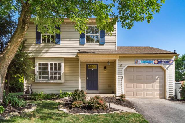 1730 Laramie Drive, Powell, OH 43065 (MLS #219027663) :: Signature Real Estate