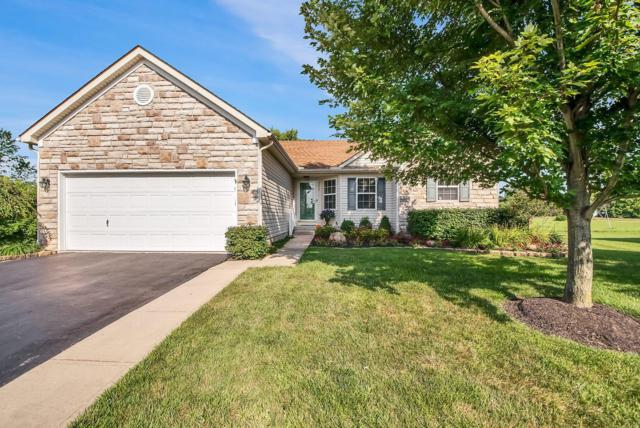 5674 Cruiser Avenue, Groveport, OH 43125 (MLS #219027733) :: The Raines Group