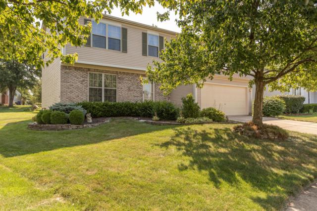 4936 Strawberry Glade Drive, Columbus, OH 43230 (MLS #219027902) :: Keith Sharick | HER Realtors