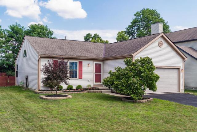 4932 Ballentine Drive, Canal Winchester, OH 43110 (MLS #219028125) :: Signature Real Estate
