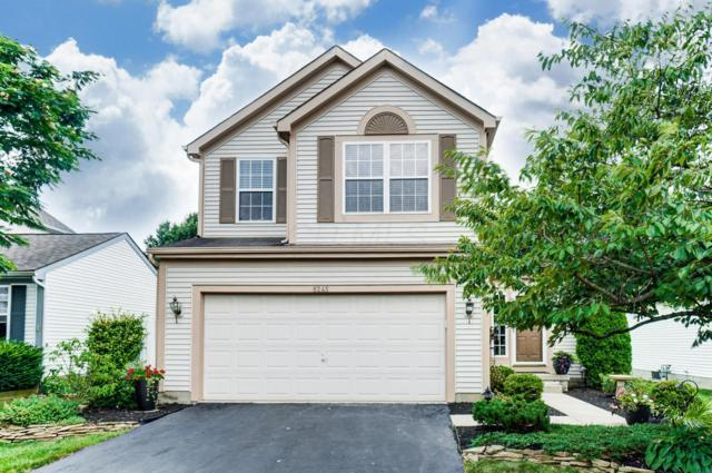 8245 Old Ivory Way, Blacklick, OH 43004 (MLS #219028318) :: Shannon Grimm & Partners Team