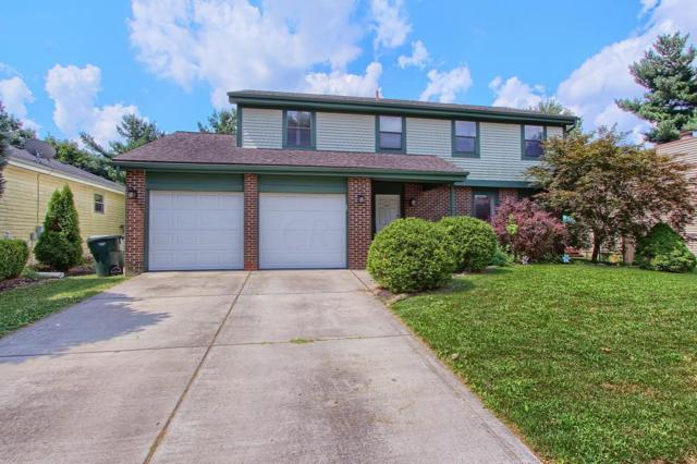 4047 Leather Stocking Trail, Columbus, OH 43230 (MLS #219028326) :: RE/MAX ONE
