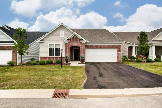 12233 Rooster Tail Drive, Pickerington, OH 43147 (MLS #219028340) :: Keller Williams Excel