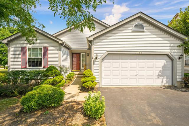 4415 Windrow Drive, Grove City, OH 43123 (MLS #219028394) :: Signature Real Estate