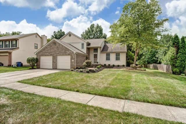 527 Beaverbrook Drive, Columbus, OH 43230 (MLS #219028521) :: The Raines Group
