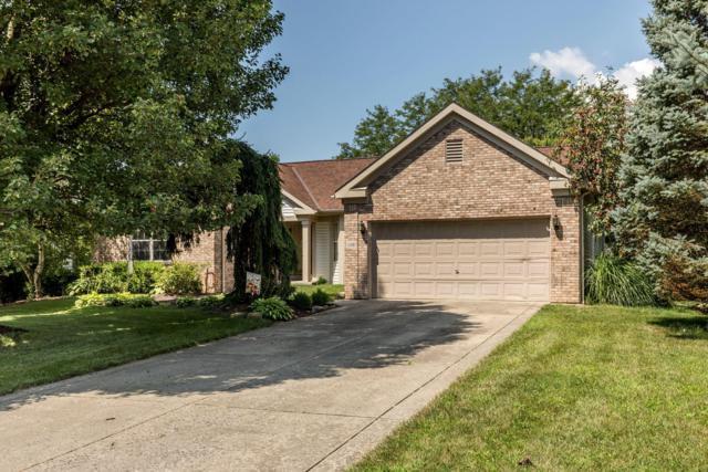 12017 Sheldrake Court, Pickerington, OH 43147 (MLS #219028562) :: Signature Real Estate