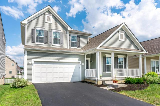 6114 Prosen Drive, Westerville, OH 43081 (MLS #219028735) :: RE/MAX ONE