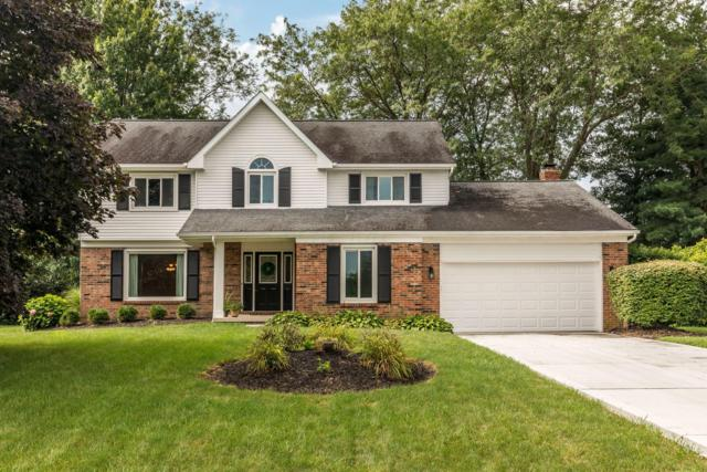 9835 Hounsdale Drive, Pickerington, OH 43147 (MLS #219028813) :: RE/MAX ONE
