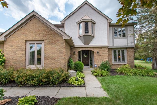 6207 George Fox Drive, Galloway, OH 43119 (MLS #219028843) :: Berkshire Hathaway HomeServices Crager Tobin Real Estate