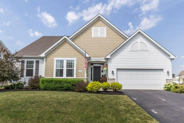 310 Gelder Drive, Delaware, OH 43015 (MLS #219028863) :: Signature Real Estate