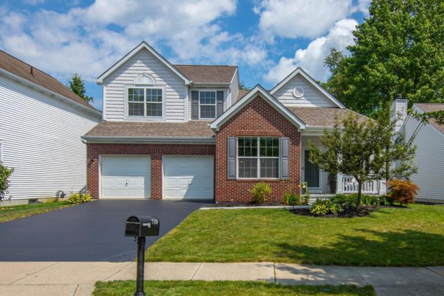 7158 Upper Albany Drive, New Albany, OH 43054 (MLS #219028909) :: Keith Sharick | HER Realtors
