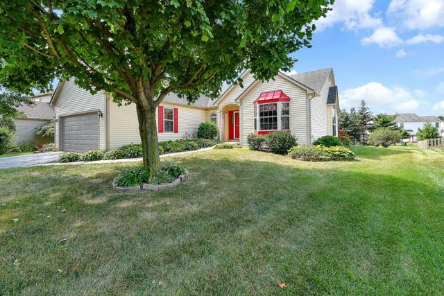 7617 Ashlar Court, Canal Winchester, OH 43110 (MLS #219029007) :: The Raines Group