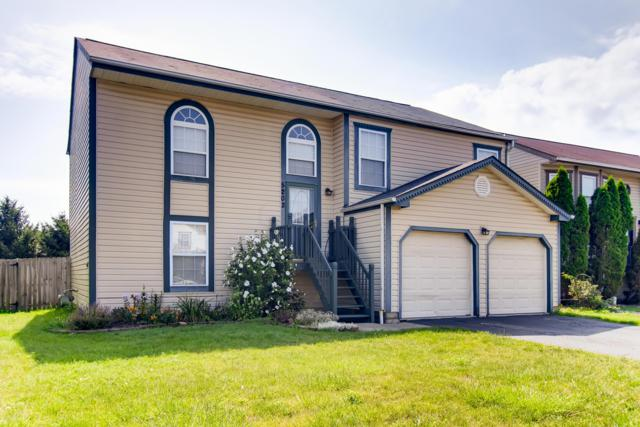 5202 Southbend Drive, Canal Winchester, OH 43110 (MLS #219029025) :: RE/MAX ONE