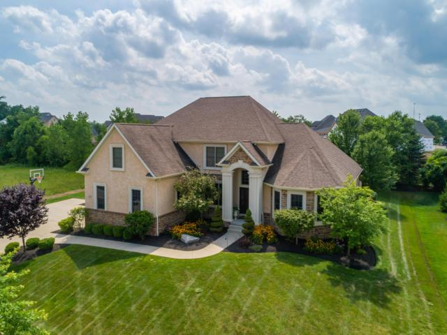 9908 Allen Drive, Dublin, OH 43017 (MLS #219029032) :: RE/MAX ONE