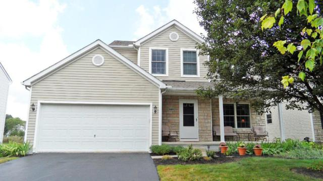 5689 Genoa Farms Boulevard, Westerville, OH 43082 (MLS #219029678) :: Signature Real Estate