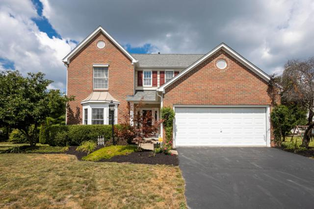 7260 Summerfield Drive, Lewis Center, OH 43035 (MLS #219029690) :: The Raines Group