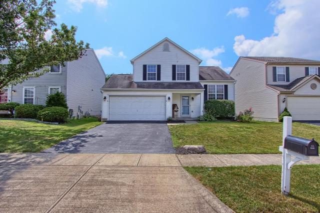 6765 Laburnum Drive, Canal Winchester, OH 43110 (MLS #219029743) :: Huston Home Team