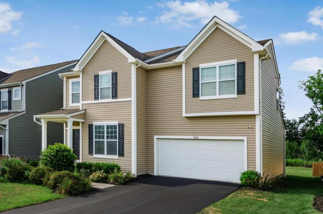 8638 Aconite Drive, Blacklick, OH 43004 (MLS #219029934) :: The Raines Group