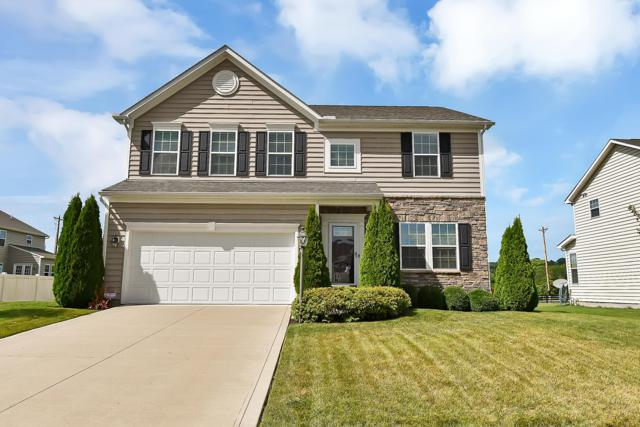 8766 Riverside Place, Canal Winchester, OH 43110 (MLS #219029936) :: RE/MAX ONE