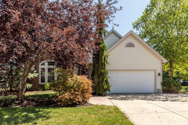 7850 Glenmore Drive, Powell, OH 43065 (MLS #219030016) :: RE/MAX ONE