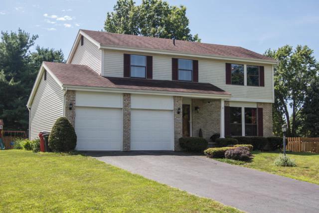 9803 Woodsfield Circle N, Pickerington, OH 43147 (MLS #219030148) :: The Raines Group