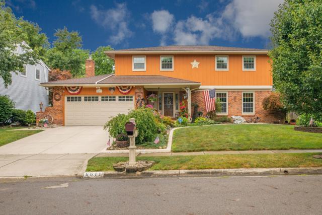 6611 Goldenrod Drive, Columbus, OH 43229 (MLS #219030177) :: Signature Real Estate